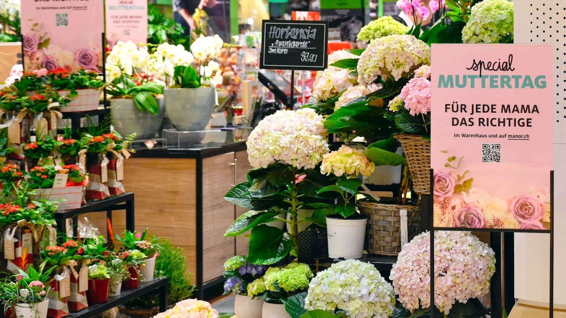 Muttertag: Tipps für insektenfreundliche Blumen-Geschenke